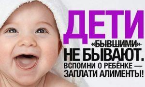 Алименты на ребёнка: кто имеет право, размер, перечень документов