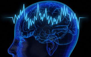 Как заставить мозг работать