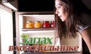 Избавляемся от запаха в холодильнике