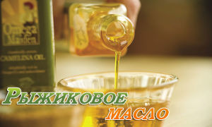 Польза и вред рыжикового масла