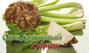 Рецепты сельдереевого супа для похудения