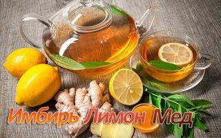 Имбирь с лимоном и медом — рецепт здоровья для иммунитета