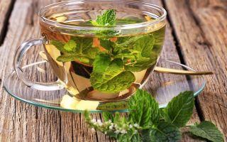 Можно ли пить чай с мятой? Как заварить мятный чай?