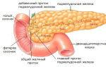 Заболевания и функции поджелудочной железы