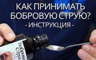 Лечебные свойства и применение бобровой струи