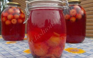 Компот из яблок и черноплодной рябины на зиму, простой рецепт