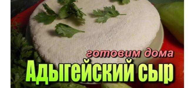 Как сделать адыгейский сыр дома
