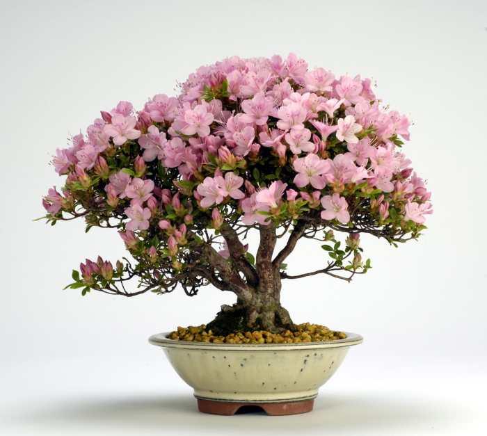 На фото декор из искусственного цветка